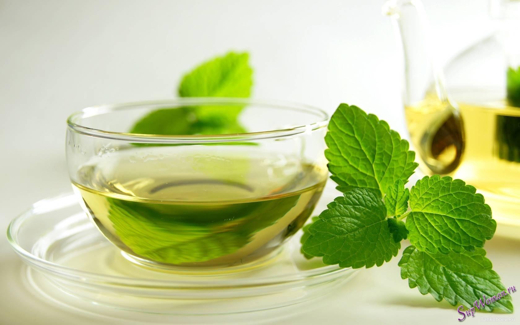 головная боль лечение зеленым чаем