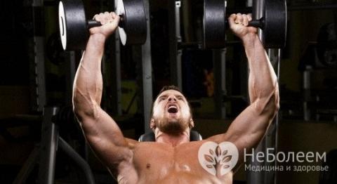Повысить тестостерон у мужчин помогают силовые упражнения