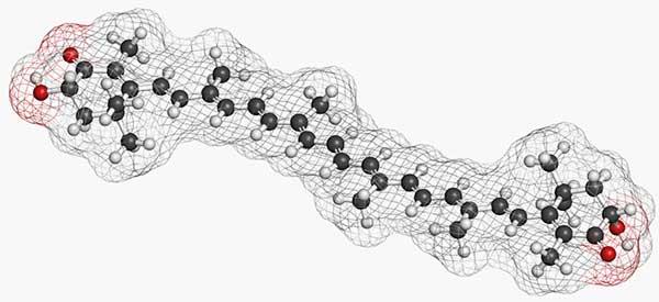 схематическое изображение молекулы астаксантина