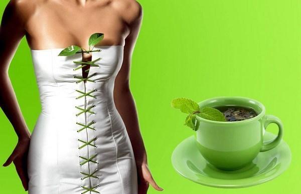Как пить зелёный чай для похудения