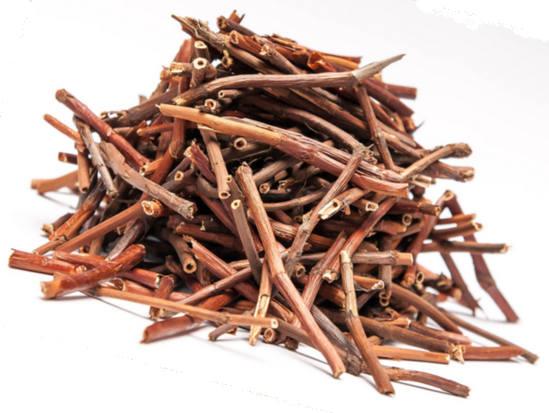 лечебные свойства корня сабельника