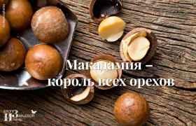 Макадамия – король всех орехов