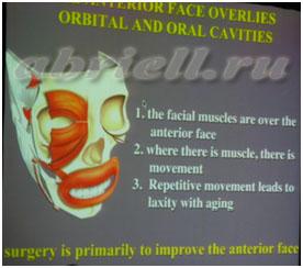 Модель стареющего лица и коррекции возрастных изменений