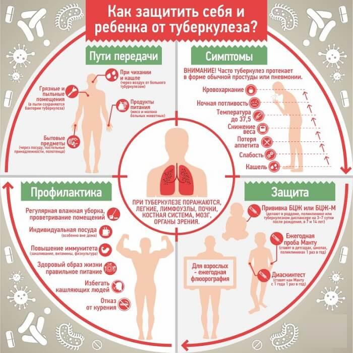 Основная информация о туберкулезе
