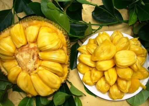 Семена джекфрута