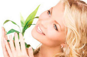Травы очищающие организм