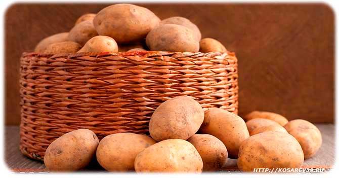 В чем вред картофеля