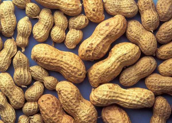орехи много