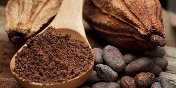 Какао бобы и порошок в ложке