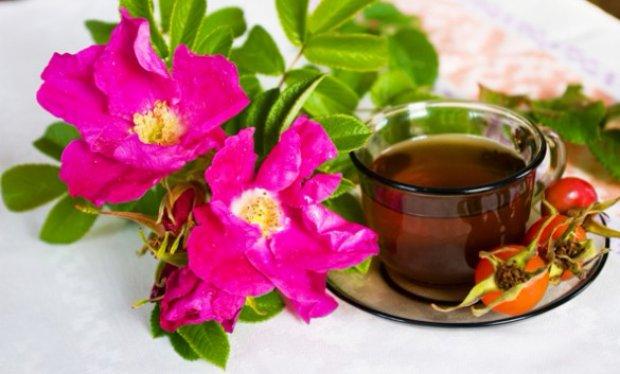 Чай из цветков шиповника