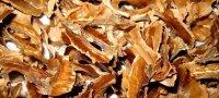 Лечебные свойства перегородок грецких орехов, рецепты приготовления