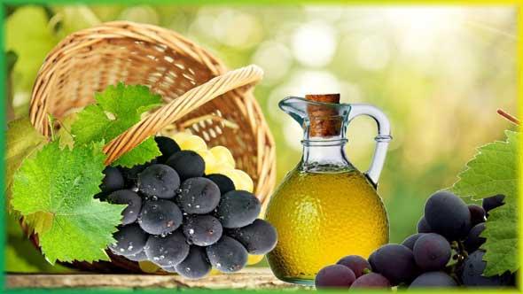 Масло виноградной косточки свойства и состав, применение