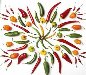 Особенности горького перца