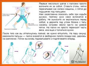 Особенности ходьбы с палками