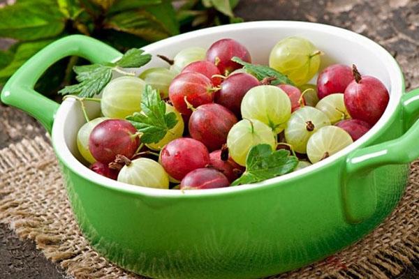 выбор качественных ягод