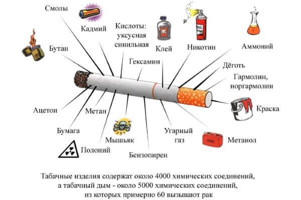 Из чего состоит сигарета
